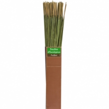 ECO2 - EUCALYPTUS ECO INCENSE