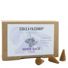 WITTE SALIE CONES (Jiri and Friends)